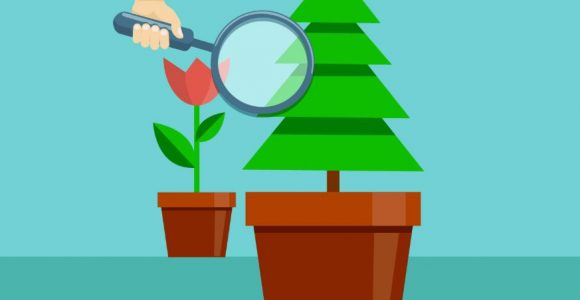 How to Curate an Evergreen Share List for Social Media