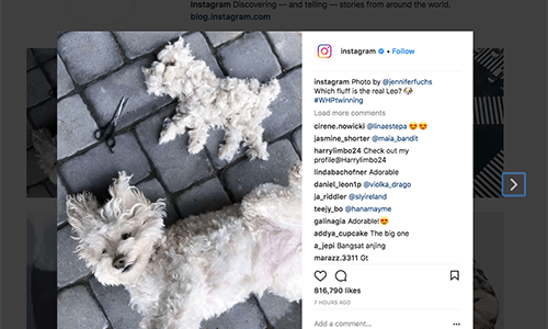 10 Hashtags To Use And Get Noticed On Instagram – Jarvee