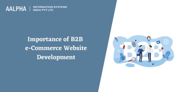 Importance of B2B e-Commerce Website Development