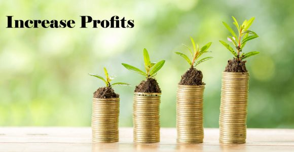 Increase profits and appointment booking: 5 Ways   Salonist Blogs