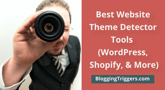 Top 10 Best Website Theme Detector Tools To Detect Themes on Any Site