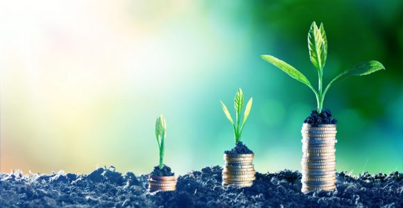 How to Raise Funds for an LLP in India