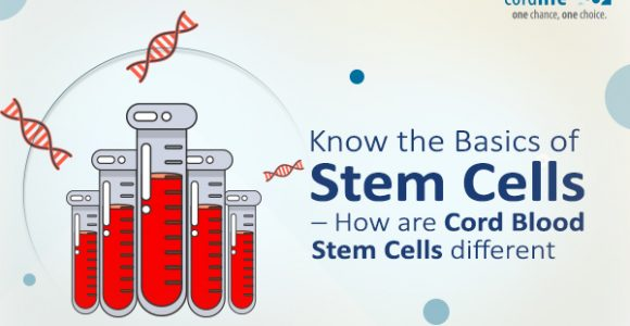 Know the Basics of Stem Cells – How are Cord Blood Stem Cells Different?