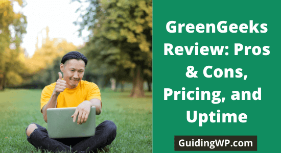 GreenGeeks Review: Is It Good or Bad?